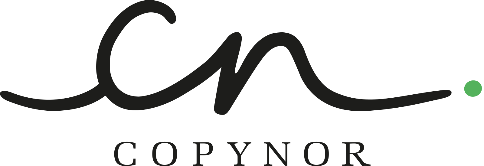 Copynor Logo